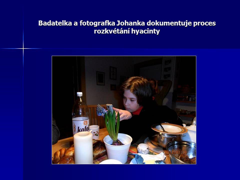 Badatelka a fotografka Johanka dokumentuje proces rozkvétání hyacinty