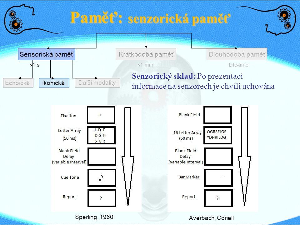 Echoická Paměť: senzorická paměť Sensorická paměťDlouhodobá paměťKrátkodobá paměť <1 s<1 min Life-time Ikonická Další modality Senzorický sklad: Po pr