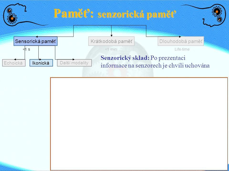 Echoická Paměť: senzorická paměť Sensorická paměťDlouhodobá paměťKrátkodobá paměť <1 s<1 min Life-time Ikonická Další modality Senzorický sklad: Po prezentaci informace na senzorech je chvíli uchována SWRTQZBMPLKYCNFJSWRTQZBMPLKYCNFJ