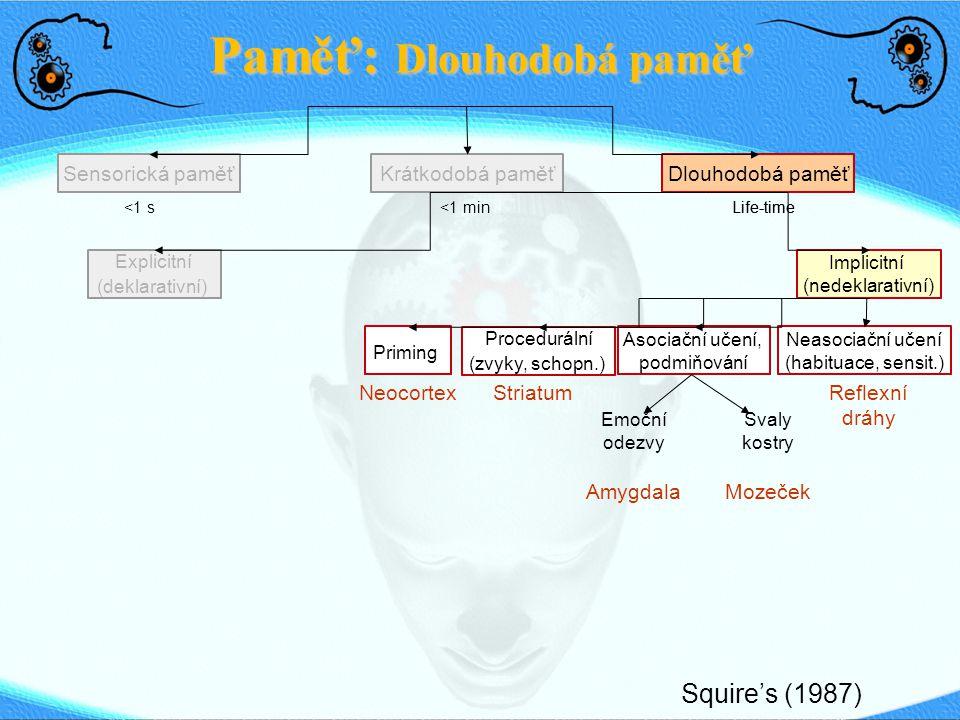Paměť: Dlouhodobá paměť Sensorická paměťDlouhodobá paměťKrátkodobá paměť <1 s <1 min Life-time Explicitní (deklarativní) Implicitní (nedeklarativní) Priming Procedurální (zvyky, schopn.) Asociační učení, podmiňování Neasociační učení (habituace, sensit.) Squire's (1987) Neocortex StriatumReflexní dráhy Emoční odezvy Amygdala Svaly kostry Mozeček