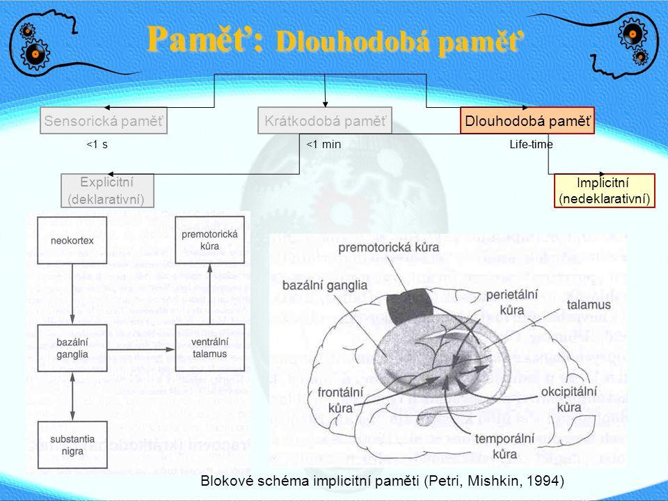 Paměť: Dlouhodobá paměť Sensorická paměťDlouhodobá paměťKrátkodobá paměť <1 s <1 min Life-time Explicitní (deklarativní) Implicitní (nedeklarativní) Blokové schéma implicitní paměti (Petri, Mishkin, 1994)