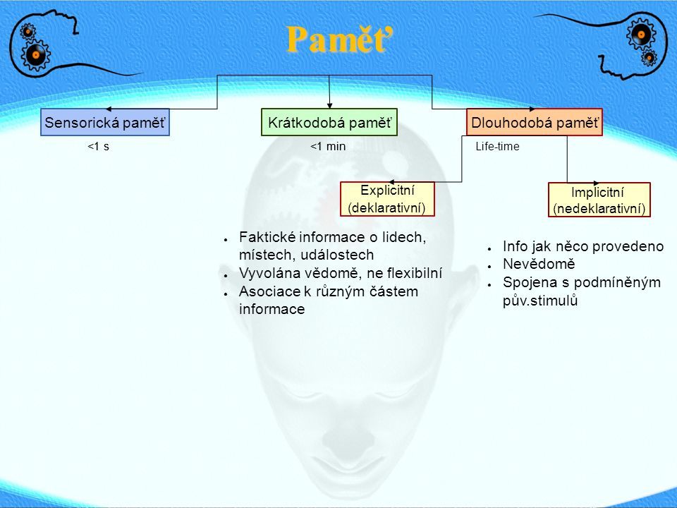 Paměť: Dlouhodobá paměť Sensorická paměťDlouhodobá paměťKrátkodobá paměť <1 s <1 min Life-time Explicitní (deklarativní) Implicitní (nedeklarativní) Priming Procedurální (zvyky, schopn.) Asociační učení, podmiňování Neasociační učení (habituace, sensit.) Squire's (1987)