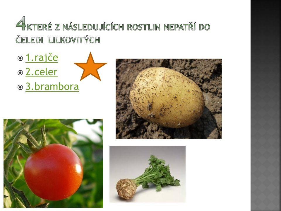  1.rajče 1.rajče  2.celer 2.celer  3.brambora 3.brambora
