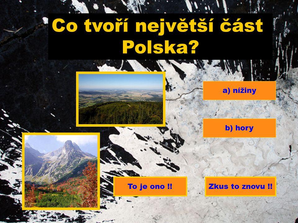 Co tvoří největší část Polska? a) nížiny b) hory To je ono !!Zkus to znovu !!