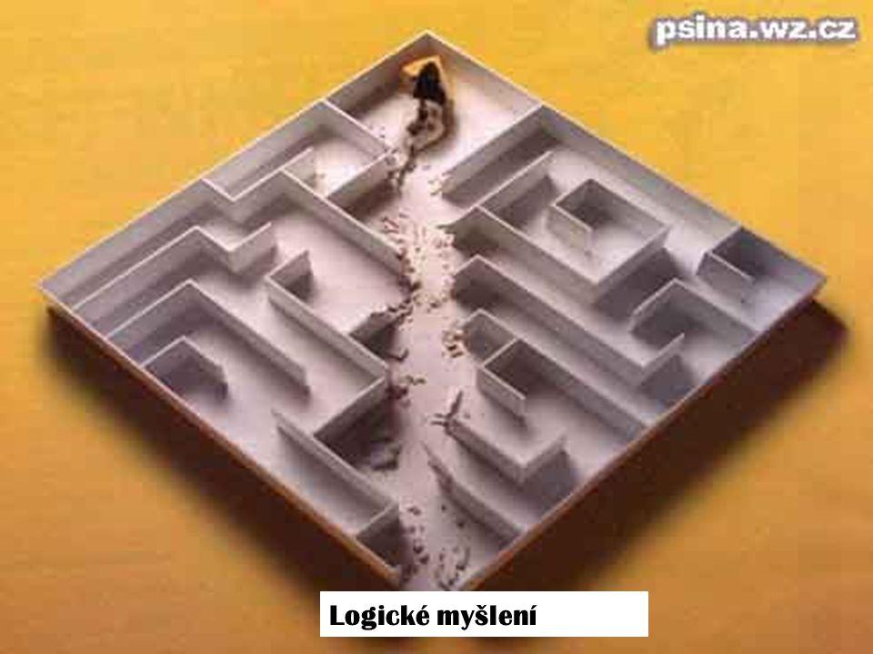 Logické myšlení