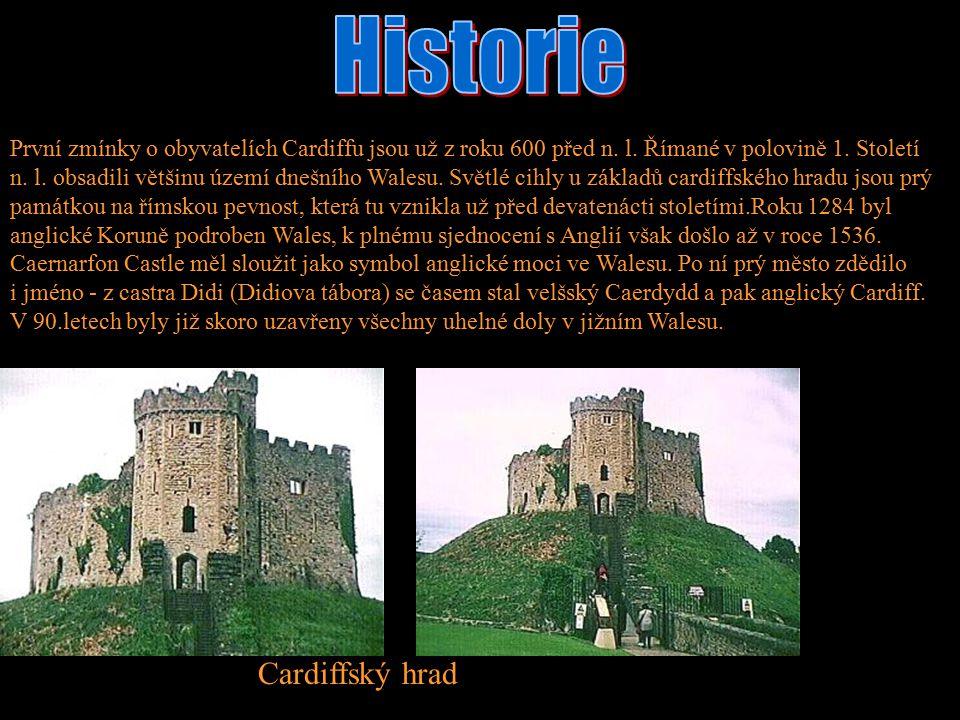 První zmínky o obyvatelích Cardiffu jsou už z roku 600 před n. l. Římané v polovině 1. Století n. l. obsadili většinu území dnešního Walesu. Světlé ci