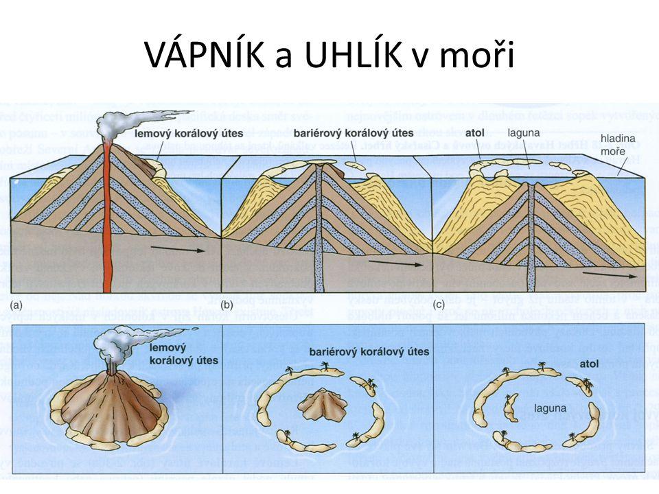 VZNIK a ZÁNIK minerálů 6.Napiš chemický vzorec uhličitanu vápenatého 7.Nakresli tvar schránky rozsivky 8.Které organismy v moři vytvořily největší množství schránek z uhličitanu vápenatého a jsou tak dnes zdrojem těženého vápence v ČR.