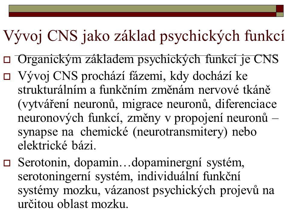 Vývoj CNS jako základ psychických funkcí  Organickým základem psychických funkcí je CNS  Vývoj CNS prochází fázemi, kdy dochází ke strukturálním a funkčním změnám nervové tkáně (vytváření neuronů, migrace neuronů, diferenciace neuronových funkcí, změny v propojení neuronů – synapse na chemické (neurotransmitery) nebo elektrické bázi.