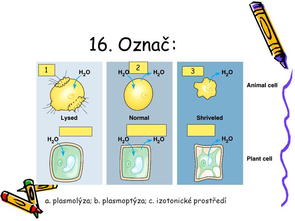 15. Následující popis se hodí nejlépe na: Obsahují enzymy schopné štěpit proteiny, polysacharidy, tuky, nukleové kyseliny kyselé prostředí - uvnitř...