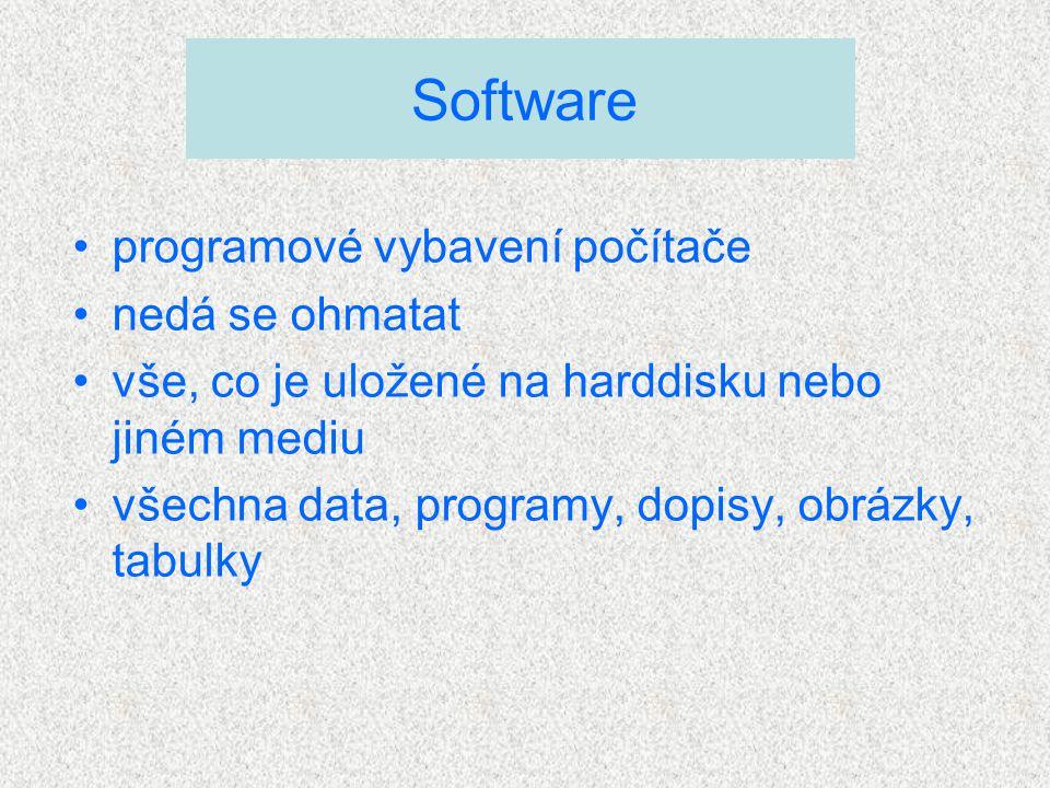 programové vybavení počítače nedá se ohmatat vše, co je uložené na harddisku nebo jiném mediu všechna data, programy, dopisy, obrázky, tabulky Software
