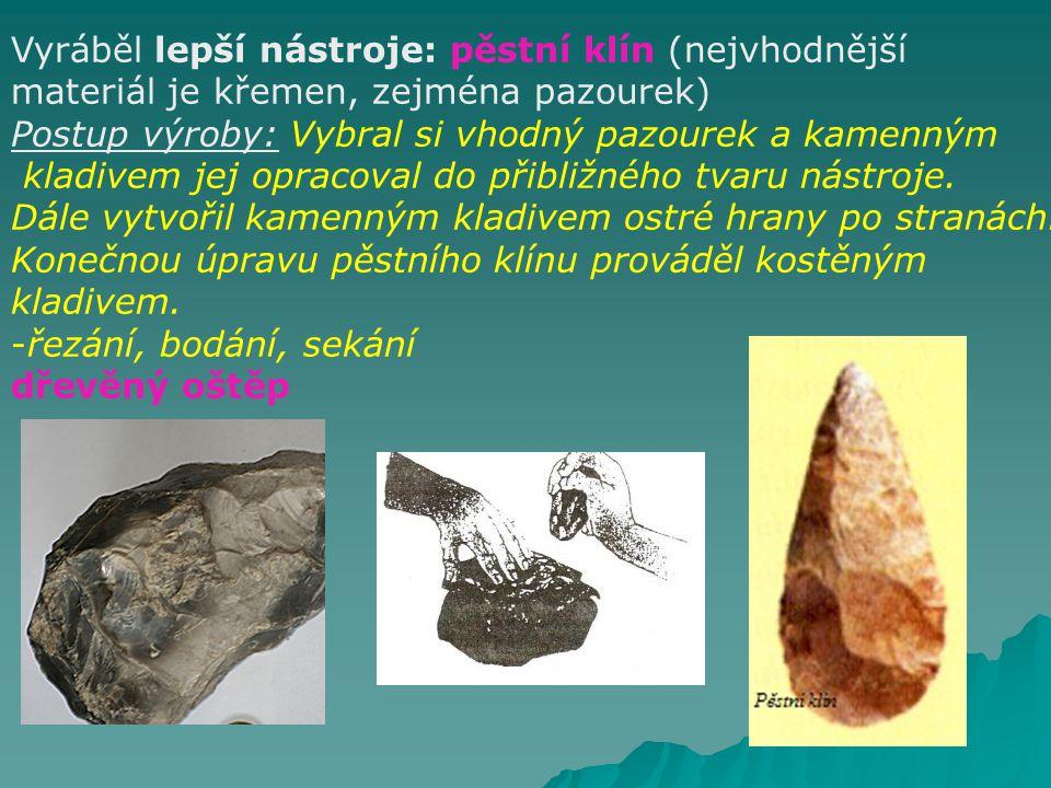 ČLOVĚK VZPŘÍMENÝ (Homo erectus) asi 1,5 mil.– 300 000 př.