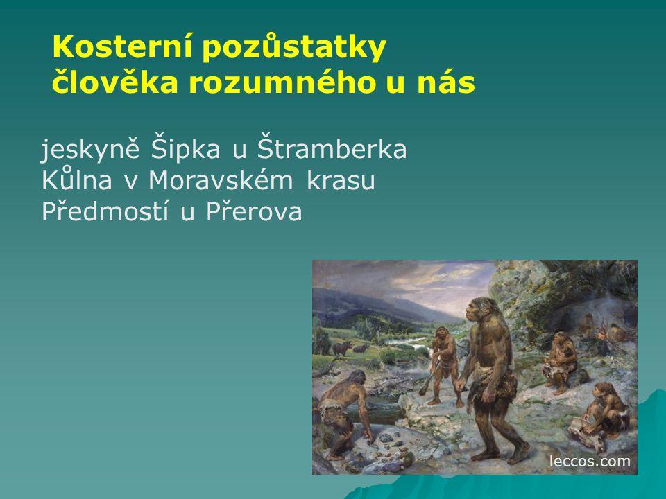 Člověk neandertálský (100 000 – 30 000 př.n.