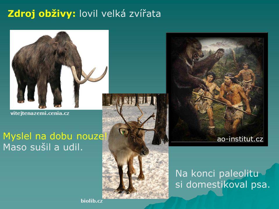ao-institut.cz ČLOVĚK SOUČASNÉHO TYPU (Homo sapiens sapiens) asi od 40 000 př.