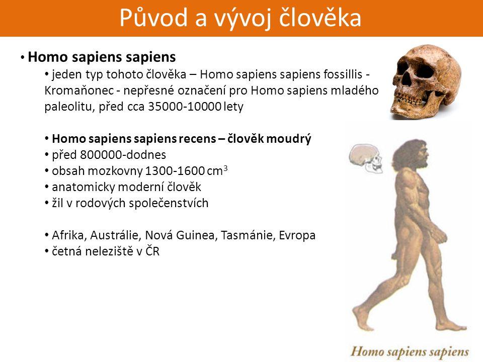 Živorodí - placentálové Původ a vývoj člověka Homo sapiens sapiens jeden typ tohoto člověka – Homo sapiens sapiens fossillis - Kromaňonec - nepřesné o