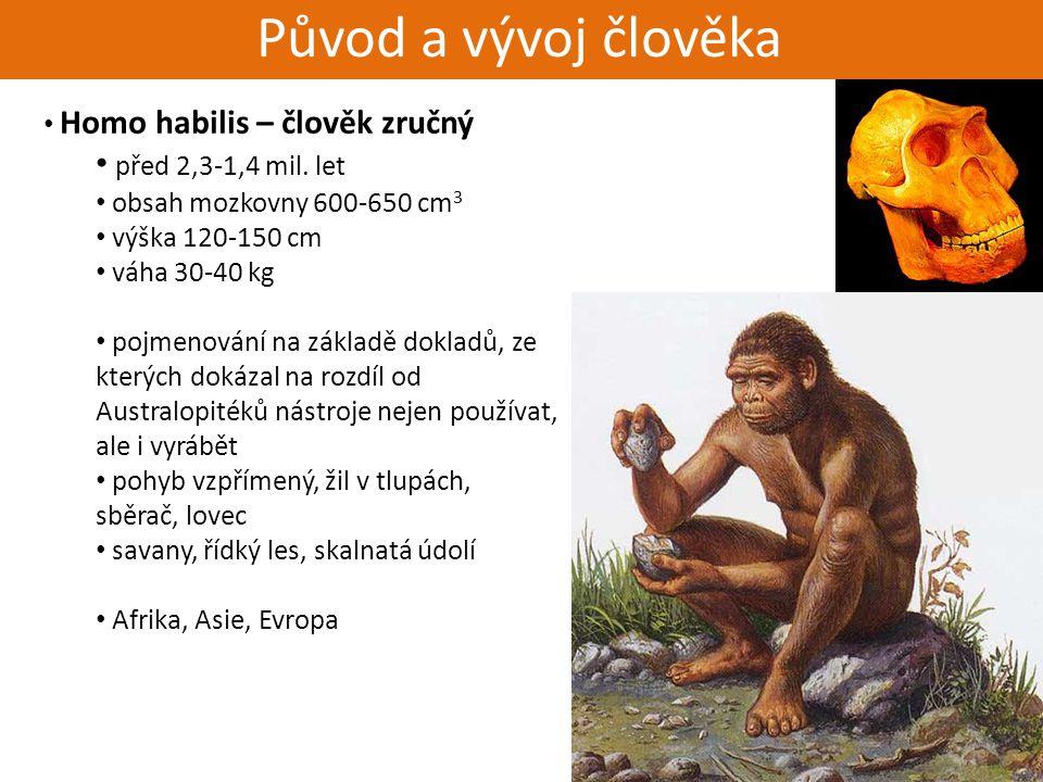 Živorodí - placentálové Původ a vývoj člověka Homo habilis – člověk zručný před 2,3-1,4 mil. let obsah mozkovny 600-650 cm 3 výška 120-150 cm váha 30-
