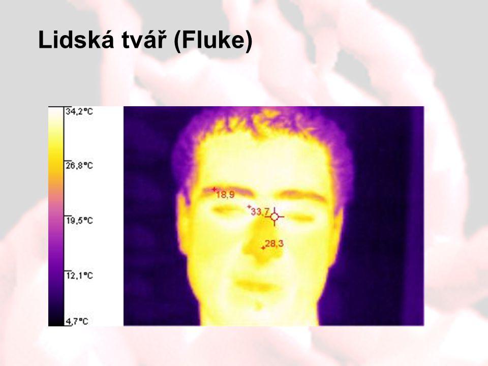Lidská tvář (Fluke)