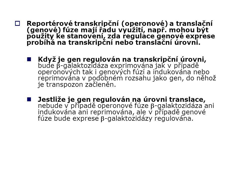  Reportérové transkripční (operonové) a translační (genové) fúze mají řadu využití, např.