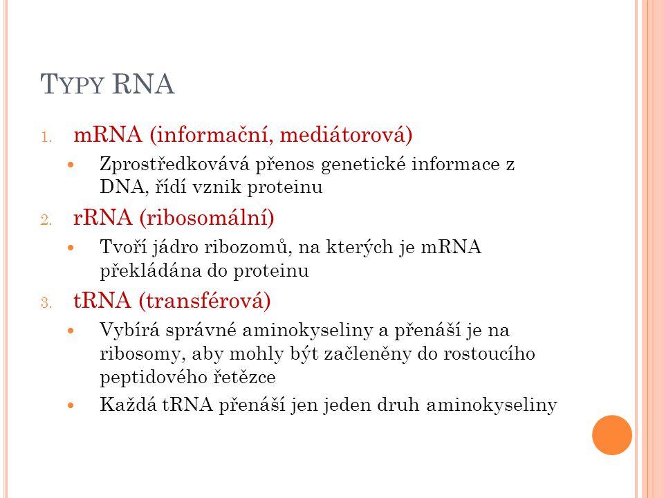 T YPY RNA 1.