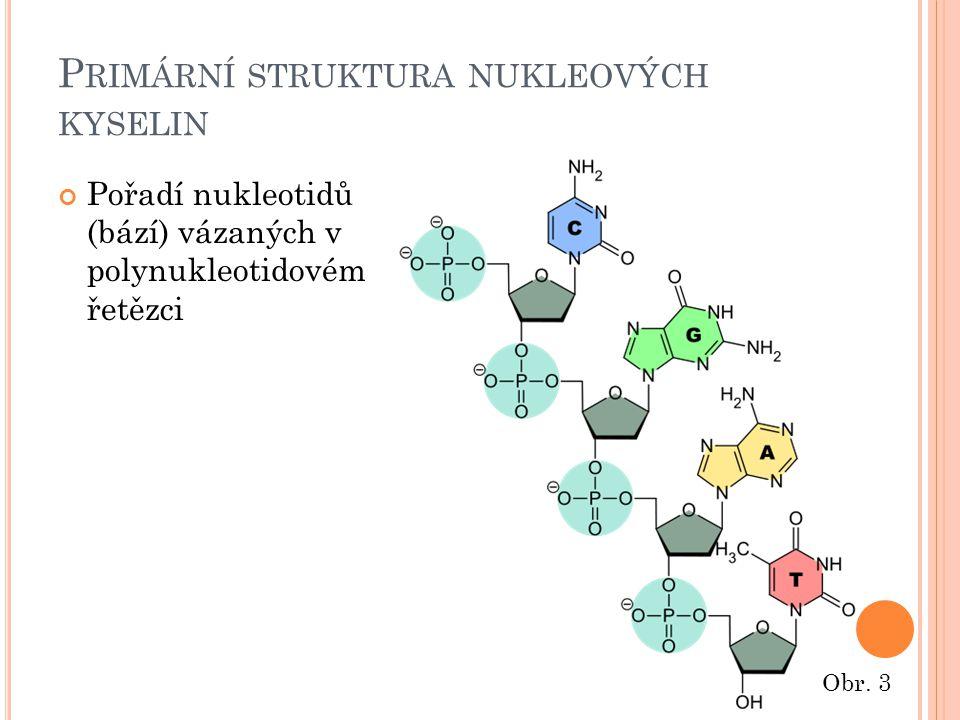 S EKUNDÁRNÍ STRUKTURA DNA Jediný typ sekundární struktury DNA – pravotočivá dvoušroubovice (double helix) Dva polynukleotidové řetězce se propletou kolem společné osy Obr.