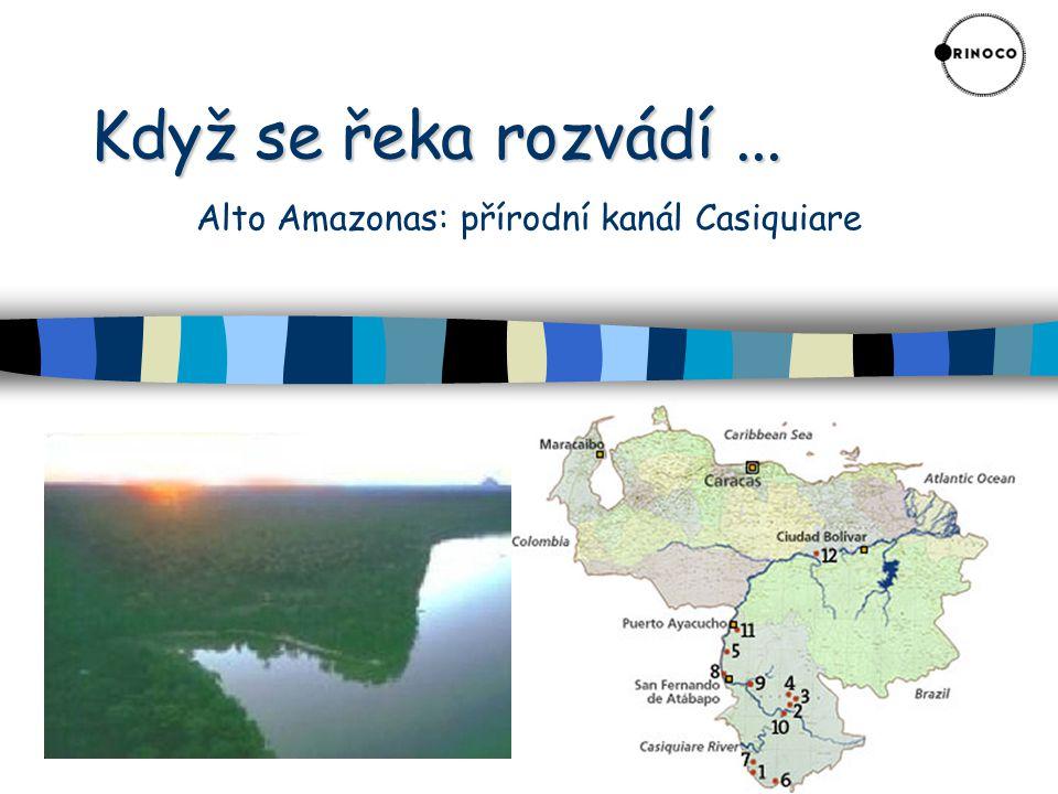 Když se řeka rozvádí... Když se řeka rozvádí... Alto Amazonas: přírodní kanál Casiquiare