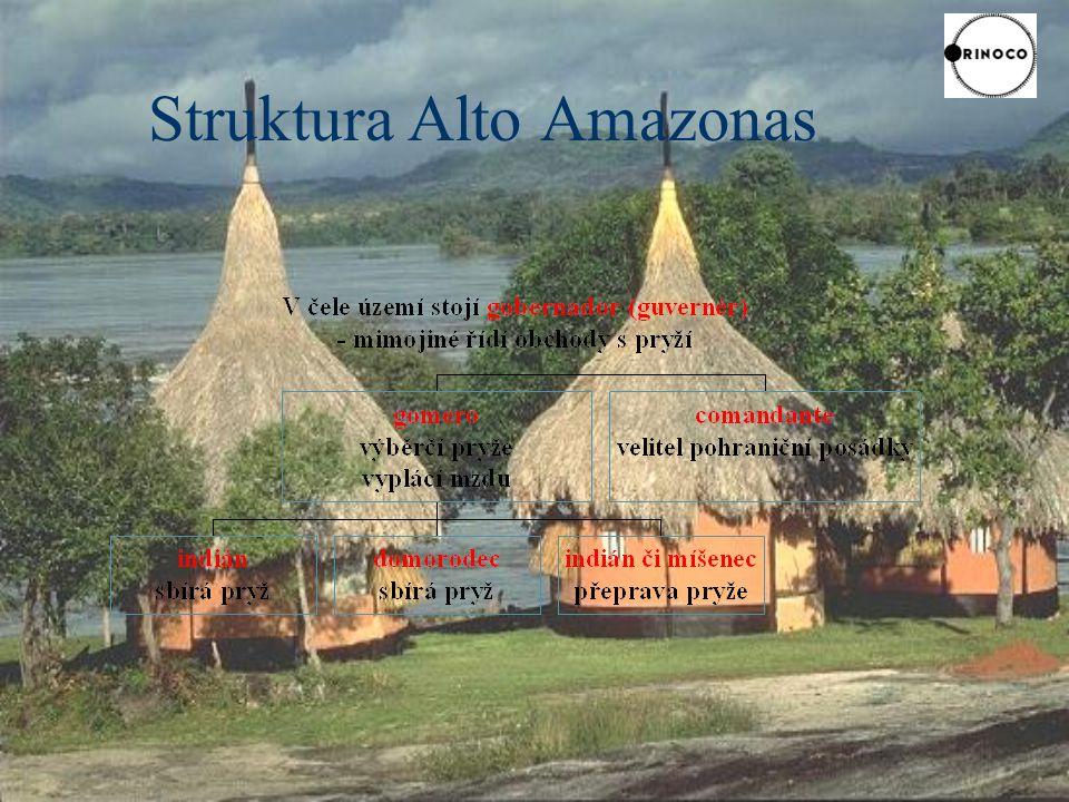 Struktura Alto Amazonas