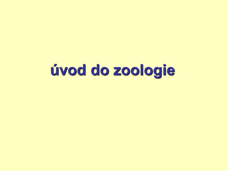 úvod do zoologie