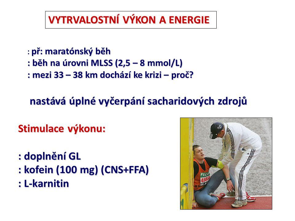 VYTRVALOSTNÍ VÝKON A ENERGIE př: maratónský běh : př: maratónský běh : běh na úrovni MLSS (2,5 – 8 mmol/L) : mezi 33 – 38 km dochází ke krizi – proč?