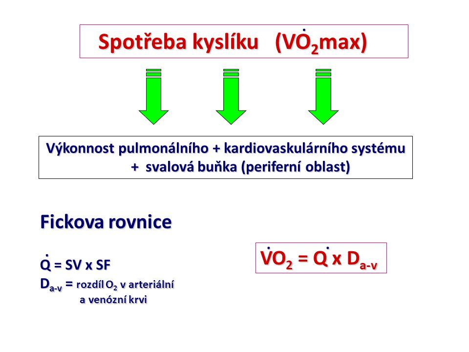 Spotřeba kyslíku (VO 2 ) Klid (NT): VO 2 = (70 x 70) x 50 (50 ml O 2 na 1 L krve) VO 2 = 245 ml.kg -1.min -1 VO 2 = 245 ml.kg -1.min -1 Člověk 70 kg: 245 : 70 = 3,5 ml O 2 /min/kg (1 MET) Maximální zátěž (NT): VO 2 max= (200 x 120) x 157 ml VO 2 max= 3140 ml.kg -1.min -1 VO 2 max= 3140 ml.kg -1.min -1 člověk 70 kg: 3140 : 70 = 45 ml.kg -1.min -1 VO 2 = Q x D a-v..