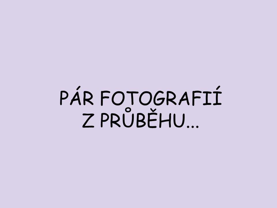 PÁR FOTOGRAFIÍ Z PRŮBĚHU...