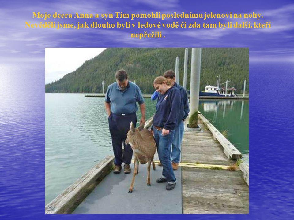 Moje dcera Anna a syn Tim pomohli poslednímu jelenovi na nohy.