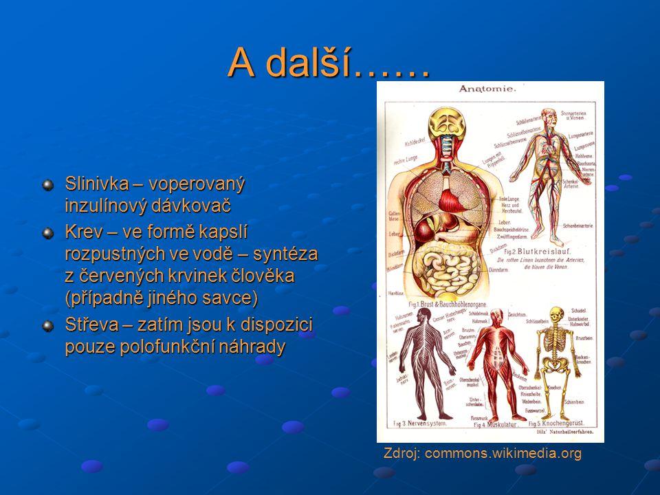 A další…… Slinivka – voperovaný inzulínový dávkovač Krev – ve formě kapslí rozpustných ve vodě – syntéza z červených krvinek člověka (případně jiného savce) Střeva – zatím jsou k dispozici pouze polofunkční náhrady Zdroj: commons.wikimedia.org