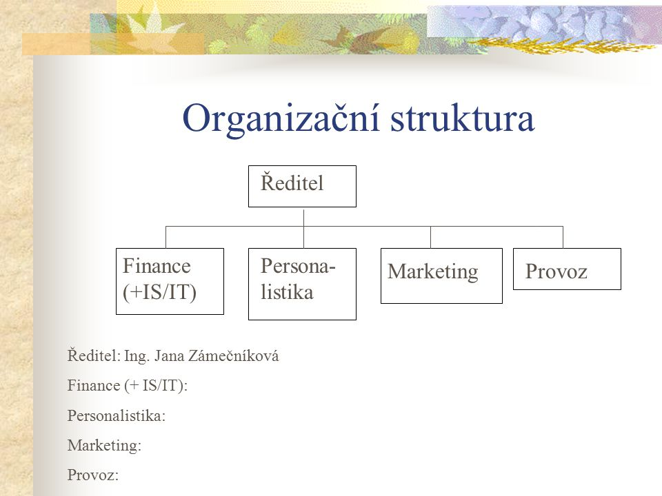Organizační struktura Ředitel Finance (+IS/IT) Persona- listika MarketingProvoz Ředitel: Ing. Jana Zámečníková Finance (+ IS/IT): Personalistika: Mark