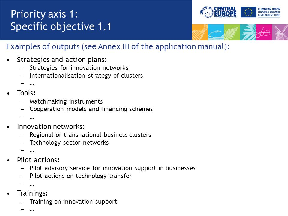Examples of outputs (see Annex III of the application manual): Strategies and action plans:  Strategies for innovation networks  Internationalisatio