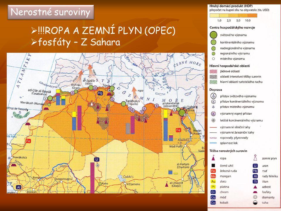 Nerostné suroviny  !!!ROPA A ZEMNÍ PLYN (OPEC)  fosfáty – Z Sahara