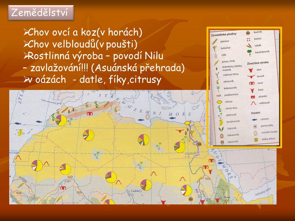 Zemědělství  Chov ovcí a koz(v horách)  Chov velbloudů(v poušti)  Rostlinná výroba – povodí Nilu – zavlažování!!! (Asuánská přehrada)  v oázách -
