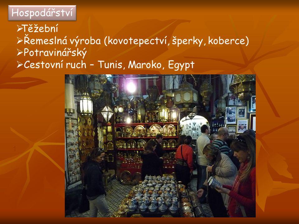 Hospodářství  Těžební  Řemeslná výroba (kovotepectví, šperky, koberce)  Potravinářský  Cestovní ruch – Tunis, Maroko, Egypt 1