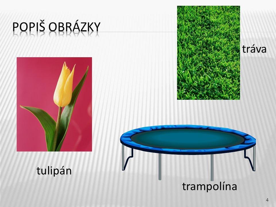 tráva 4 tulipán trampolína