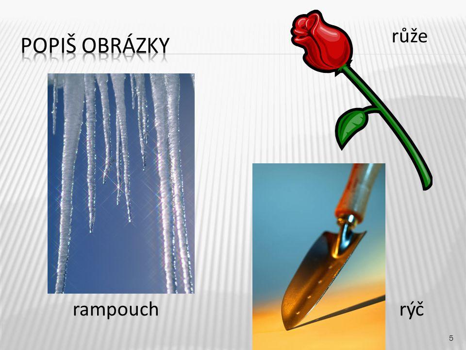 5 rampouch růže rýč