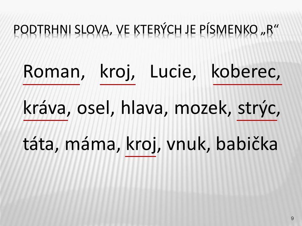 9 Roman, kroj, Lucie, koberec, kráva, osel, hlava, mozek, strýc, táta, máma, kroj, vnuk, babička
