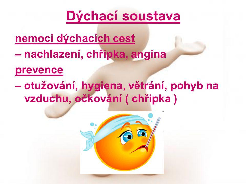 nemoci dýchacích cest – nachlazení, chřipka, angína prevence – otužování, hygiena, větrání, pohyb na vzduchu, očkování ( chřipka )