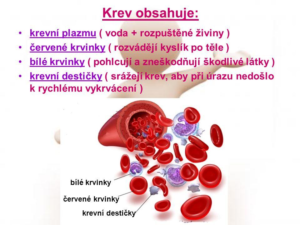 Krev obsahuje: krevní plazmu ( voda + rozpuštěné živiny ) červené krvinky ( rozvádějí kyslík po těle ) bílé krvinky ( pohlcují a zneškodňují škodlivé látky ) krevní destičky ( srážejí krev, aby při úrazu nedošlo k rychlému vykrvácení ) červené krvinky bílé krvinky krevní destičky