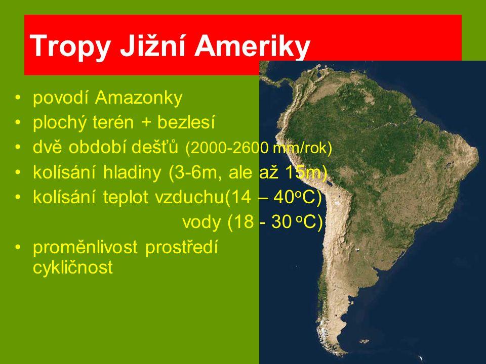 původ jižní Amerika, Peru Výška 20-50cm Šířka 20-30cm Světlo 50 W/100 l Teplota 22-28 o C Tvrdost vody 5-13 o dKH pH 6,5-7,5