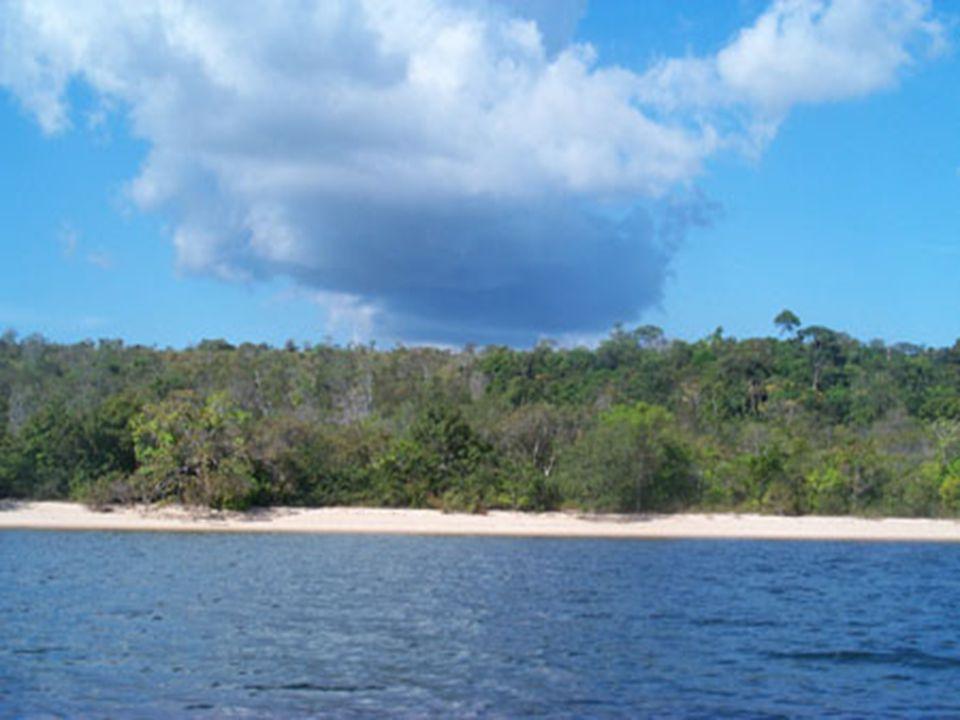 Rio Negro – přítok Amazonky