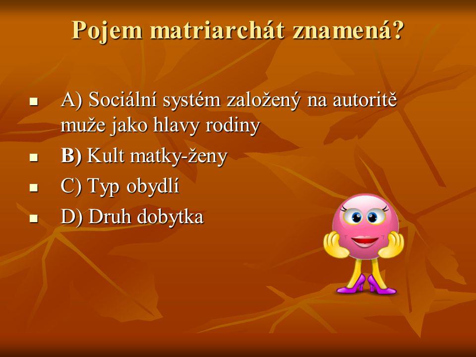 Pojem matriarchát znamená? A) Sociální systém založený na autoritě muže jako hlavy rodiny A) Sociální systém založený na autoritě muže jako hlavy rodi