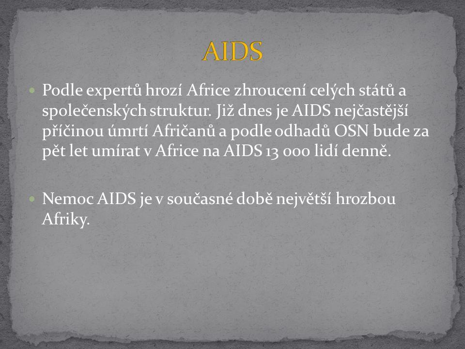 Podle expertů hrozí Africe zhroucení celých států a společenských struktur. Již dnes je AIDS nejčastější příčinou úmrtí Afričanů a podle odhadů OSN bu