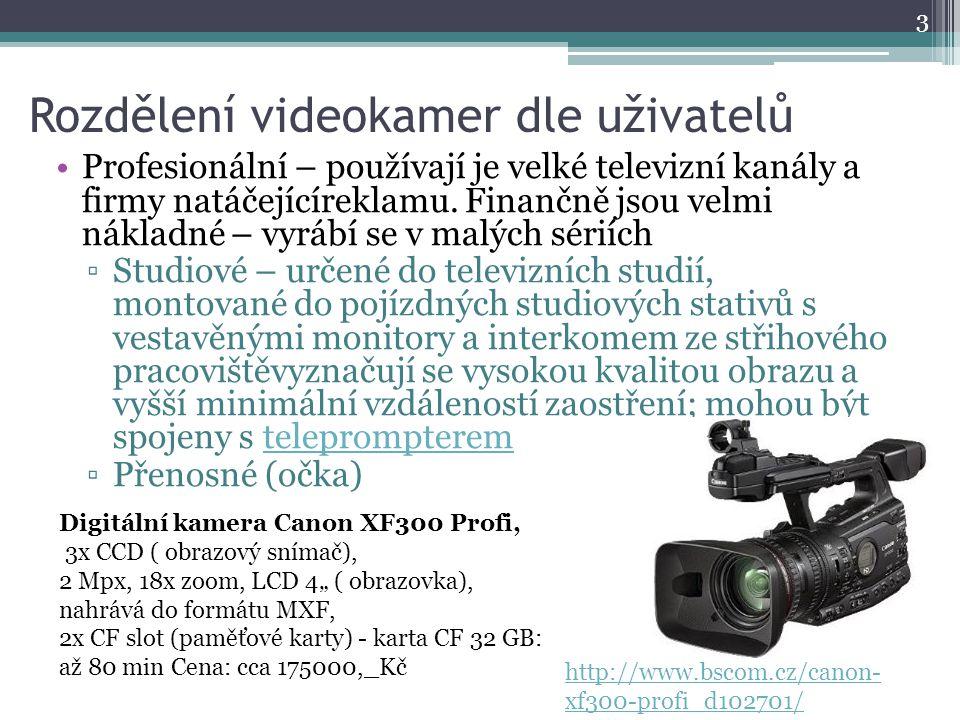 Rozdělení videokamer dle uživatelů Profesionální – používají je velké televizní kanály a firmy natáčejícíreklamu. Finančně jsou velmi nákladné – vyráb