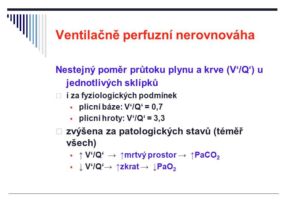 Ventilačně perfuzní nerovnováha Nestejný poměr průtoku plynu a krve (V'/Q') u jednotlivých sklípků  i za fyziologických podmínek  plicní báze: V'/Q'
