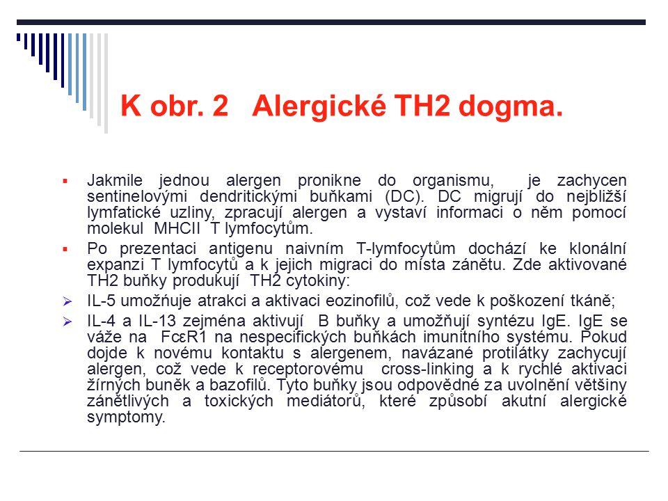 K obr. 2 Alergické TH2 dogma.  Jakmile jednou alergen pronikne do organismu, je zachycen sentinelovými dendritickými buňkami (DC). DC migrují do nejb