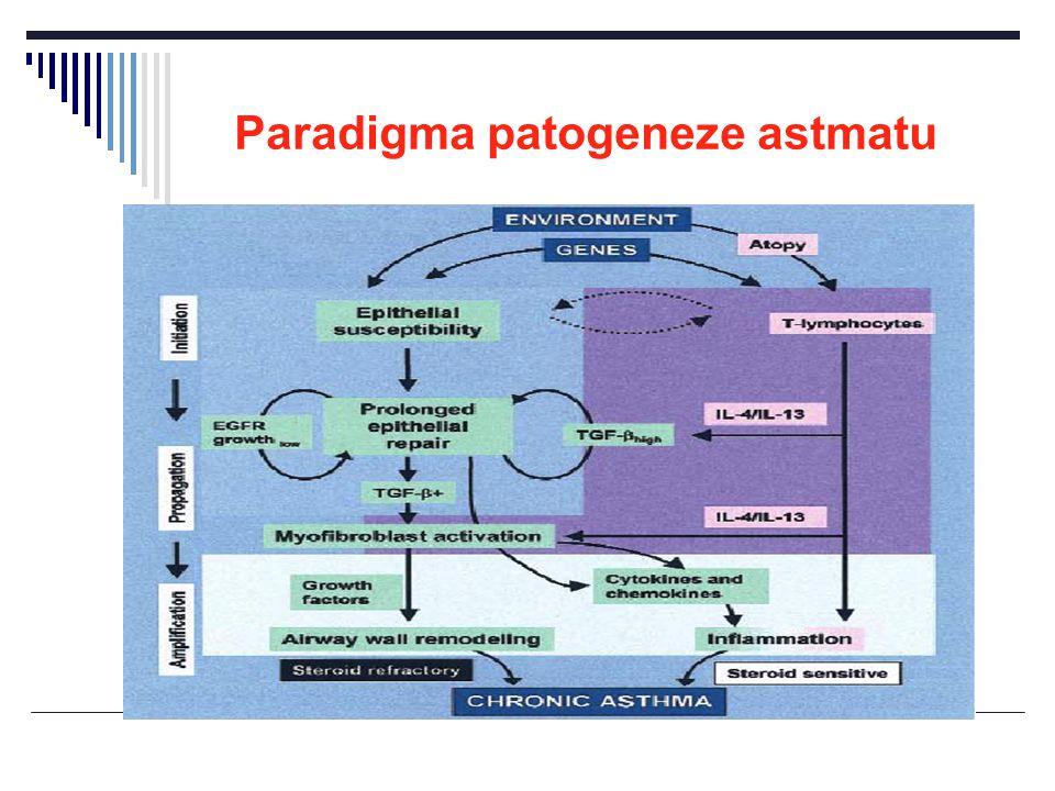 Paradigma patogeneze astmatu