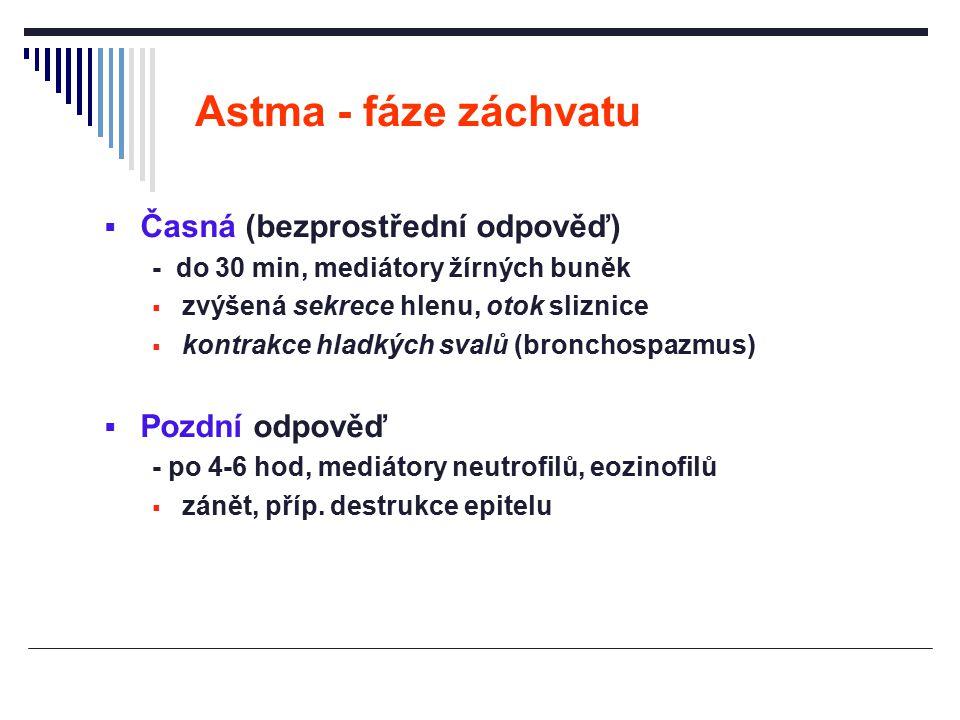 Astma - fáze záchvatu  Časná (bezprostřední odpověď) - do 30 min, mediátory žírných buněk  zvýšená sekrece hlenu, otok sliznice  kontrakce hladkých